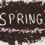 The Beginning Of Spring Is Time For A Spiritual Cleansing